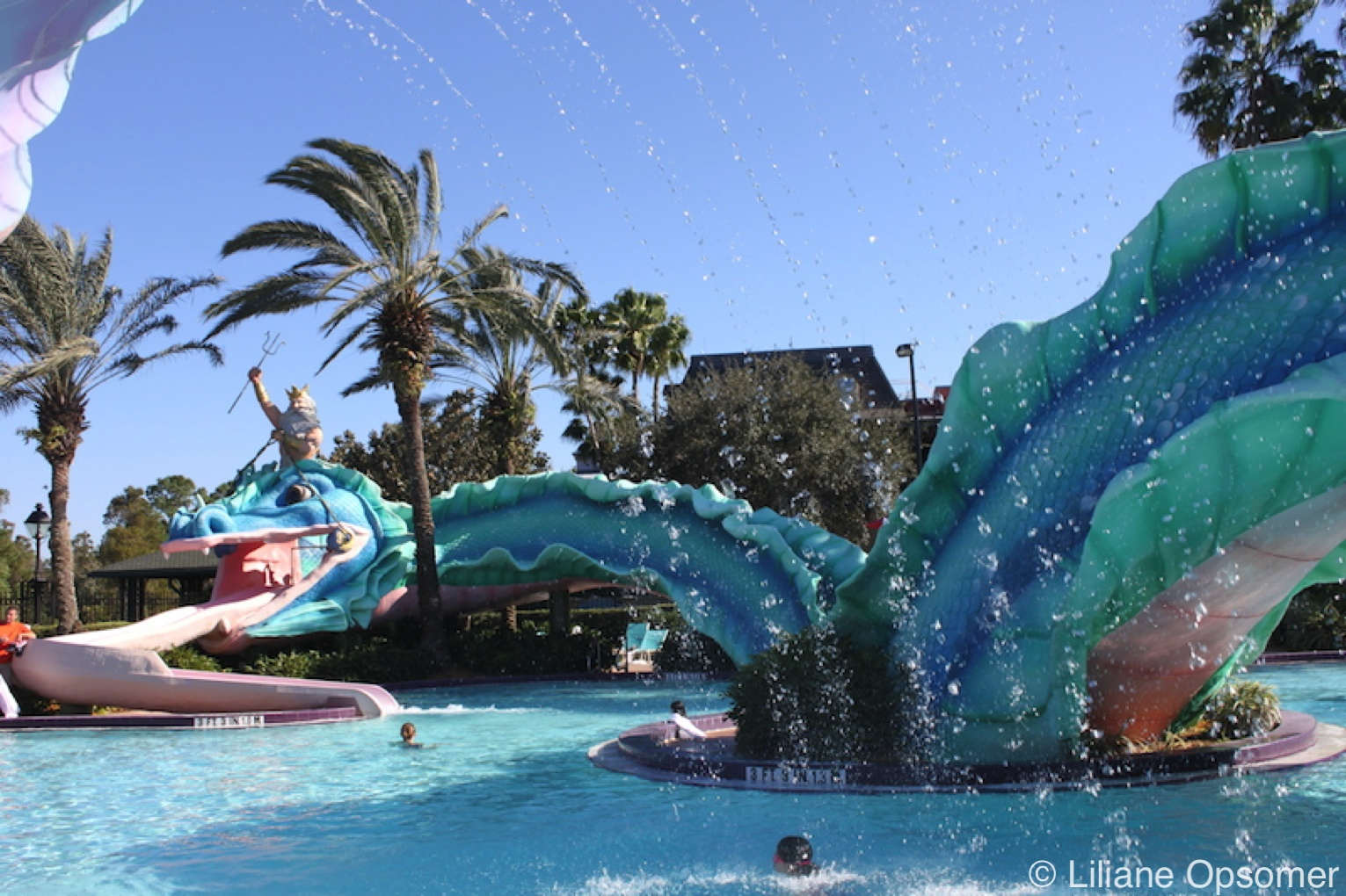 Disney World Swimming Pools The Unofficial Guides