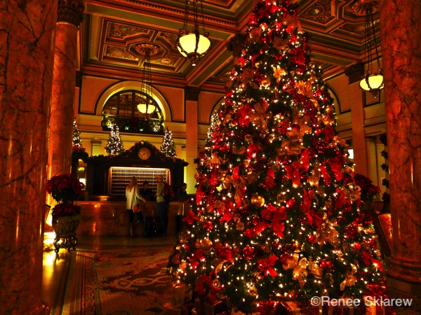 Christmas In Dc.Christmas Holidays In Washington D C The Unofficial Guides