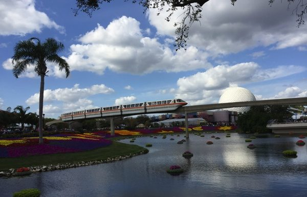Epcot Blooms
