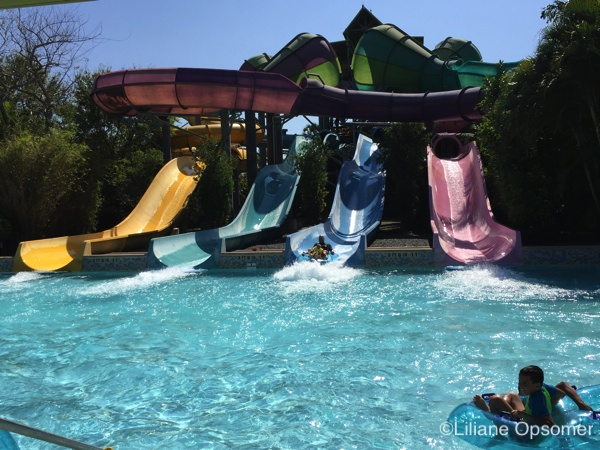 Aquatica A Review Of Seaworld S Water Park The Unofficial Guides