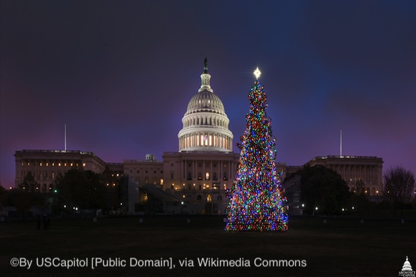 Yuletide at US Capitol