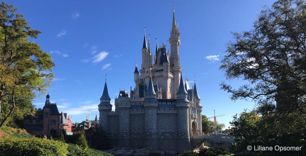 Cinderella Castle Banner