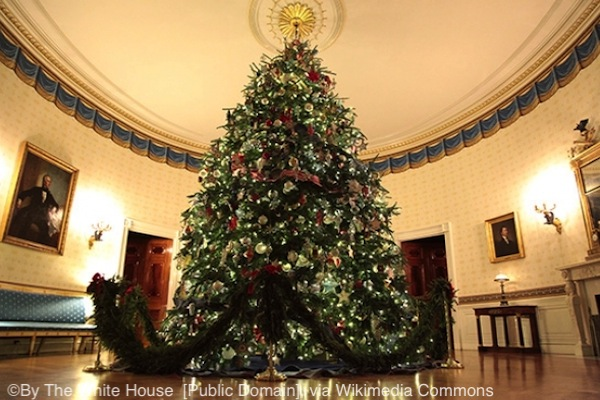 2019 White House Christmas Trees White House Christmas tree (Blue room, 2012)   The Unofficial Guides