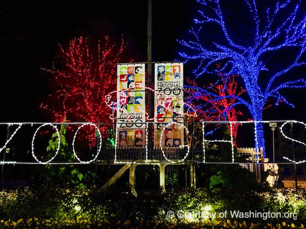 Zoo Lights Dc The Unofficial Guides