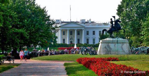 White House Banner