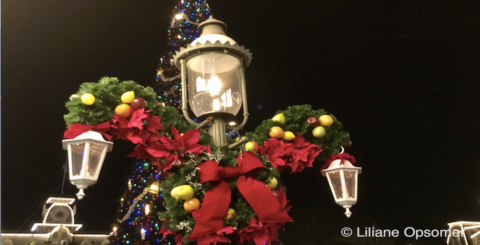 Disney Christmas Banner