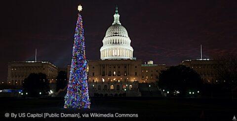 Capitol Christmas Tree Wikimedia Common
