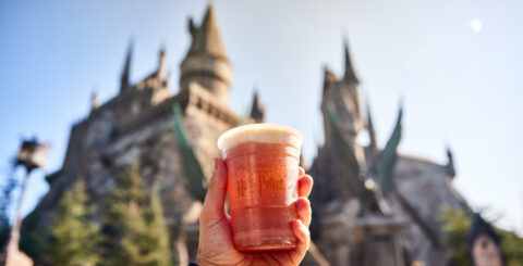 Taste of Universal Butterbeer featured