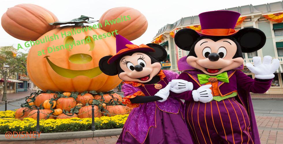 DL Halloween Banner